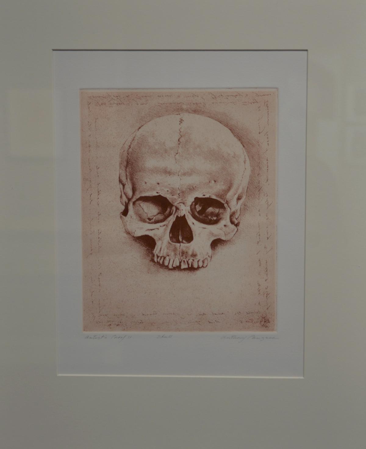 Panzera, Anthony - Skull