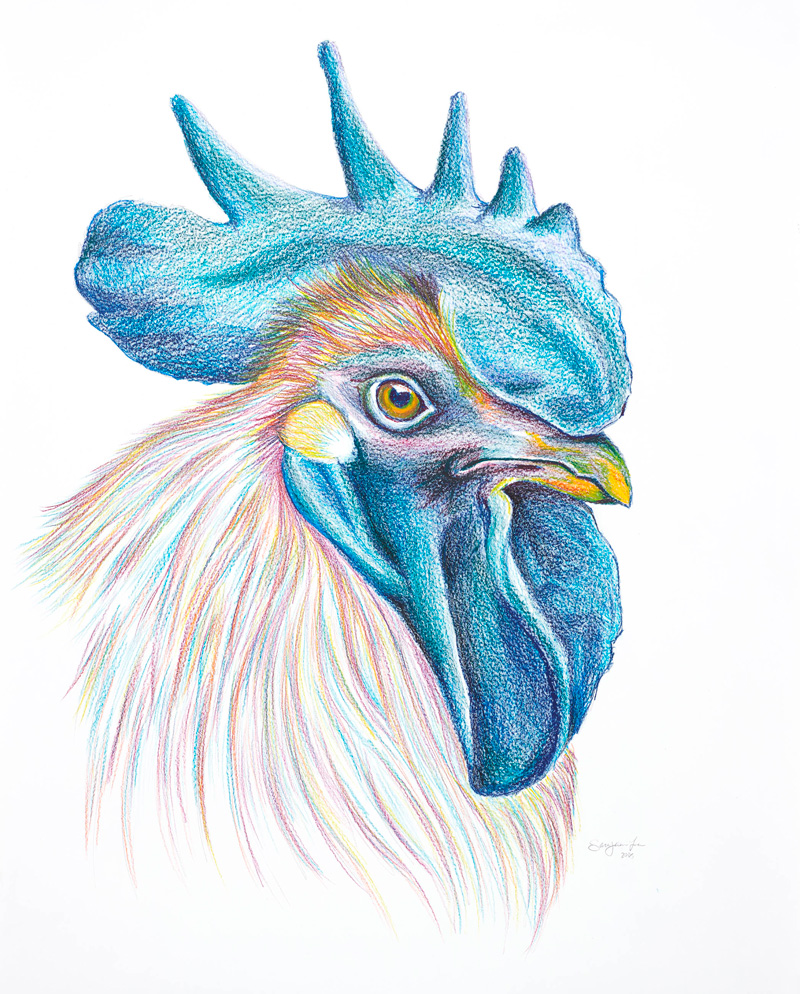 SaraJane Lee / Rooster / Alexander/Heath Contemporary
